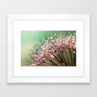 Dandelion Sunrise Framed Art Print