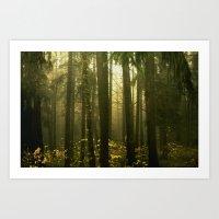 Forest#5 Art Print