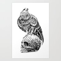 Red-Tail Skull Art Print