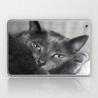 Finlay Laptop & iPad Skin