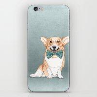 Corgi Dog iPhone & iPod Skin