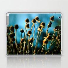 Light of the Sun Laptop & iPad Skin
