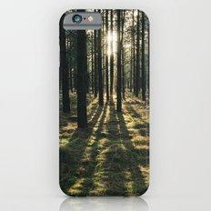 Sunlight through a dense forest. Norfolk, UK. iPhone 6 Slim Case