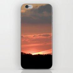 A Bird at Sunset iPhone & iPod Skin