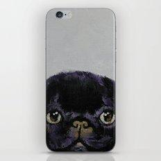 Black Pug iPhone & iPod Skin