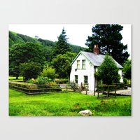 Living in a Tree Canvas Print