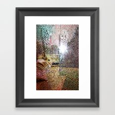 hb79n Framed Art Print