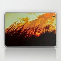 Sunset Brings the Wind Laptop & iPad Skin