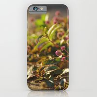 iPhone & iPod Case featuring gaia by Davi Ozolin