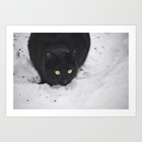 Black Cat In A Snow Art Print