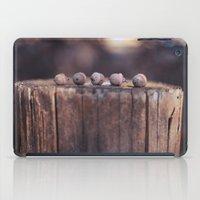 5 Acorns iPad Case