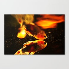 What Class Ceiling? Canvas Print