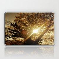 Sunset Behind The Tree Laptop & iPad Skin