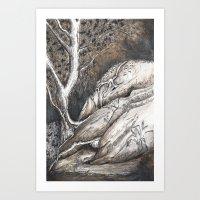 Dolphin Rocks, Summerhill Glen. Art Print