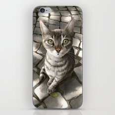 A Cat That I Once Knew iPhone & iPod Skin