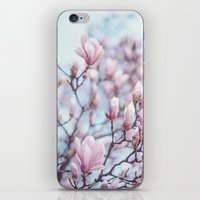 Magnolia Blossom iPhone & iPod Skin