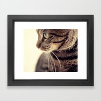 Kitty Love 2 Framed Art Print