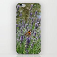 Lavender and Orange Butterfly iPhone & iPod Skin