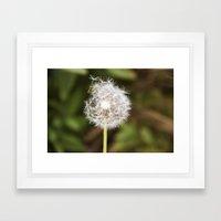 A weed. Framed Art Print