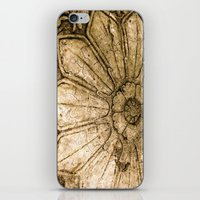 Stoned Garden Relic iPhone & iPod Skin