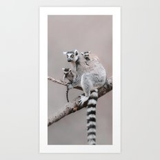 LEMURS by Monika Strigel Art Print