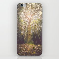 The taller we are iPhone & iPod Skin