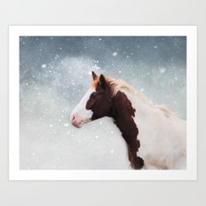 Paint Horse in the Snow Art Print