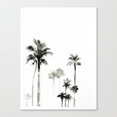 Shadow palms Canvas Print
