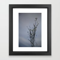 Autumn-Dandelion Framed Art Print