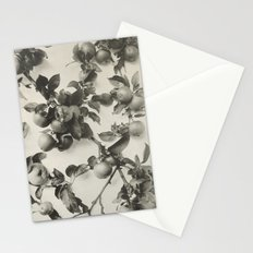 Vintage Apple Botanical Stationery Cards