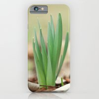 Daffidil iPhone 6 Slim Case