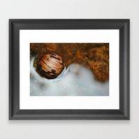 Shell Swimming Framed Art Print