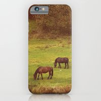 horses iPhone & iPod Cases featuring Horses by SensualPatterns