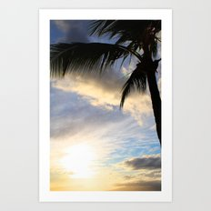 Hawaiian Palm at Sunset Art Print