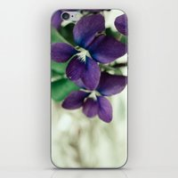 Sweet Violet iPhone & iPod Skin