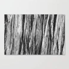 Tree Bark Revisited Canvas Print