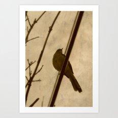 November Sky Art Print