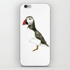 Puffin iPhone & iPod Skin