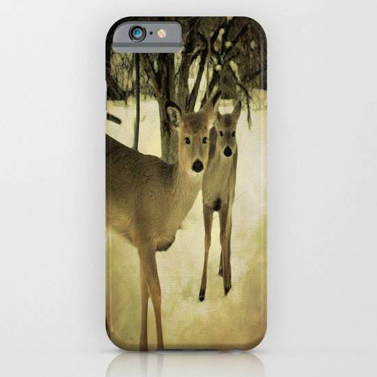 A Walk in the Woods iPhone & iPod Case