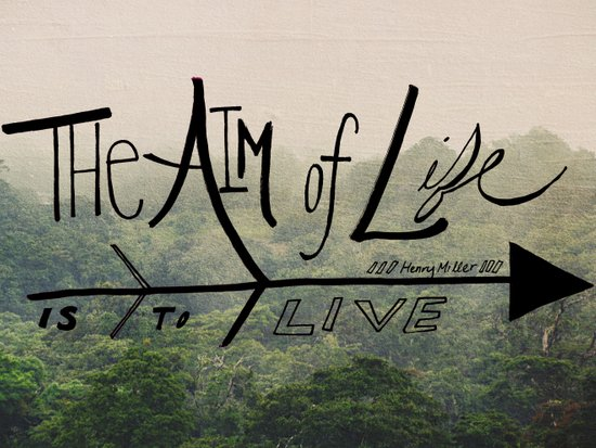 The Aim of Life Art Print