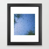 Wings Out Framed Art Print