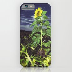 Standing tall in Moonlight Slim Case iPhone 6s