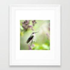 Hummingbird Charm Framed Art Print