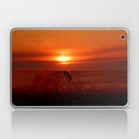 The Lioness Laptop & iPad Skin