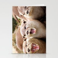 Otter Sequence Stationery Cards