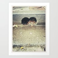 love drain Art Print