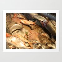 Variety Of Fresh Fish Se… Art Print