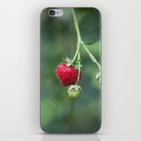Red Ripe Strawberry iPhone & iPod Skin