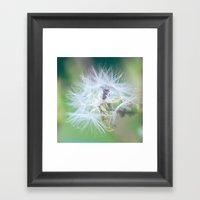 Plant a Wish Framed Art Print
