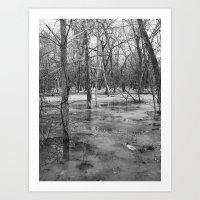 Ice Swamp Art Print